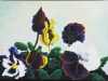 Yellow-and-blue-pansies